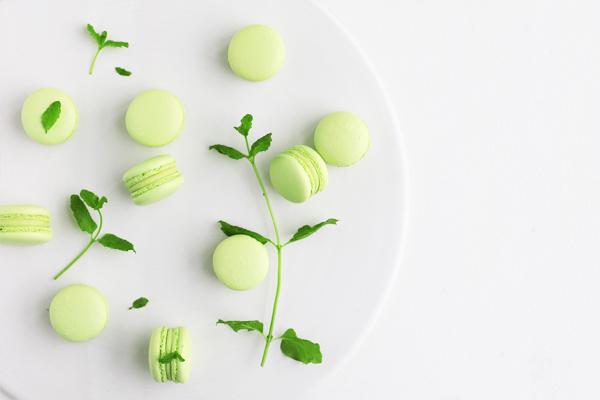 Macarons frøer mynte hvid chokolade